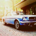 Mustang Companions Geschaeftsbericht